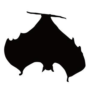 ステッカー コウモリU ぶら下がりコウモリ 蝙蝠 バットマン ハロウィン かっこいい クール/おしゃれステッカー/アクリルプレート/パーテーション/車/ガラス/窓/装飾/デコ/【メール便送料無
