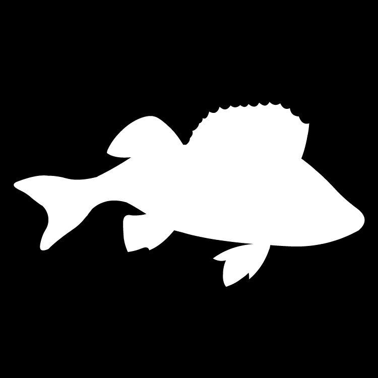 ステッカー さかな 鯛A 海の生き物