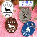迷子札・犬・だ円イラスト<犬種・A>(メール便なら→)【送料無料】