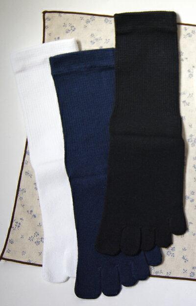 5本指ソックス スクール用ベーシックS(22-24cm)【6000】五本指 靴下 レディース 日本製