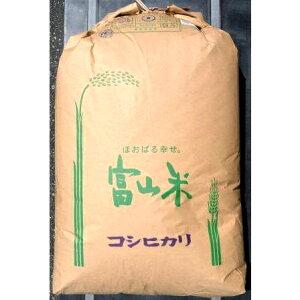 【送料無料】】令和2年産富山県産コシヒカリ玄米 30Kg