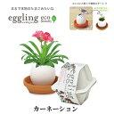 栽培キット eggling eco friendly エッグリング エコフレンドリー カーネーション 【即納】 栽培セット 植物 グリーン…