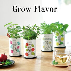 栽培キット Grow Flavor 育てるフレーバー 栽培セット アップルミント レモンバーム ワイルドストロベリー カモミール 植物 グリーン ハーブ インテリア かわいい オシャレ 置物 グッズ