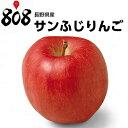 【送料無料】【ふるさと納税にも選ばれた】【長野県産】訳あり サンふじりんご 大きさおまかせ 約8kg〜10kg(北海道沖縄別途送料加算)ご…