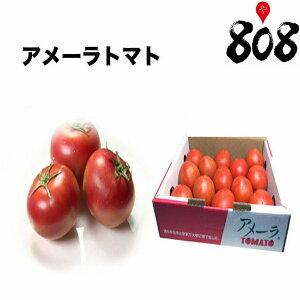 【送料無料】【静岡県/長野県産】とってもあま〜い 高糖度 アメーラトマト 大きさお任せ 1箱 約1kg(北海道沖縄別途送料加算)とまと/フルーツトマト/トマトジュース/トマトリコピン/中元/ギ