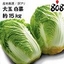 【送料無料】【産地厳選】大玉 白菜  1箱 6玉入り 約15kg(北海道沖縄別途送料加算)はくさい/キムチ/漬物/敬老の日…