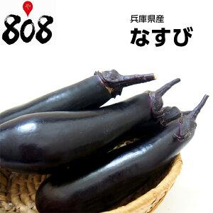 【西日本産】なすび 1パック 約300g【野菜詰め合わせセットと同梱で送料無料】【送料別】/敬老の日
