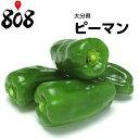 【西日本産】ピーマン 1パック 約100g【野菜詰め合わせセットと同梱で送料無料】【送料別】
