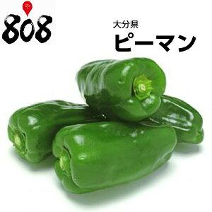 【西日本産】ピーマン 1パック 約100g【野菜詰め合わせセットと同梱で送料無料】【送料別】/敬老の日