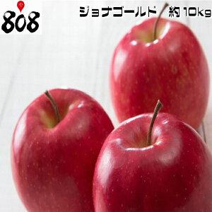 【送料無料】【青森県産】訳あり ジョナゴールド 色薄 大きさおまかせ 約10kg(北海道沖縄別途送料加算)林檎/白りんご/赤りんご/りんごジュース/リンゴジュース/りんご酢/リンゴ酢/スム