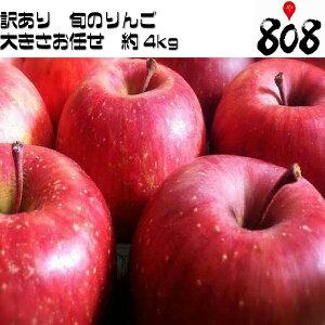 【送料無料】【長野県産】訳あり トキりんご 津軽りんご 他 旬のリンゴ 色 大きさおまかせ 約4kg(北海道沖縄別途送料加算)林檎/白りんご/赤りんご/りんごジュース/リンゴジュース/