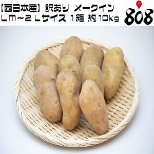 【送料無料】【西日本産】訳あり メークイン LM〜2Lサイズ 1箱 約10kg(北海道沖縄別途送料加算)メイクイーン/じゃがいも/ジャガイモ/じゃが芋/ジャガ芋/ばれいしょ/馬鈴薯/バレイショ/ホッカ