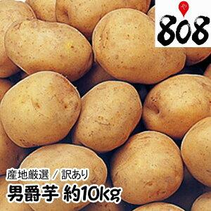 【送料無料】【あす楽】【産地厳選】男爵芋 L〜2Lサイズ  1箱 約10kg(北海道沖縄別途送料加算)男爵いも/だんしゃくいも/じゃがいも/ジャガイモ/じゃが芋/ジャガ芋/ばれいしょ/馬鈴薯/