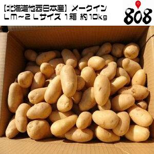 【送料無料】【北海道他西日本産】メークイン LM〜2Lサイズ 1箱 約10kg(北海道沖縄別途送料加算)メイクイーン/じゃがいも/ジャガイモ/じゃが芋/ジャガ芋/ばれいしょ/馬鈴薯/バレイショ/ホッカ