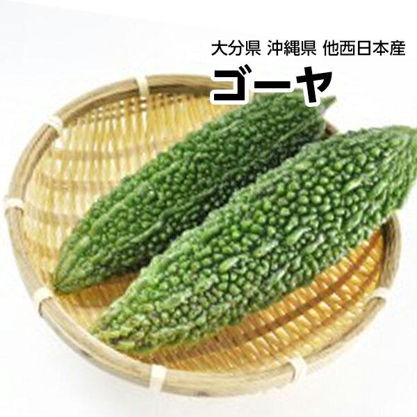【西日本産】ゴーヤ にがうり 1本 約200g【野菜詰め合わせセットと同梱で送料無料】【送料別】