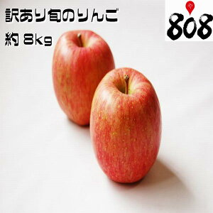 【送料無料】【長野県産】訳あり トキりんご 津軽りんご 他 旬のリンゴ 色 大きさおまかせ 約8kg(北海道沖縄別途送料加算)林檎/白りんご/赤りんご/りんごジュース/リンゴジュース/