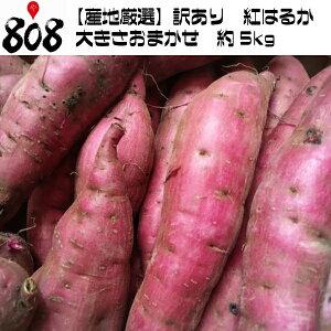【送料無料】【産地厳選】訳あり 紅はるか 大きさおまかせ 約5kg(北海道沖縄別途送料加算)べにはるか/焼き芋/煮物/さつま芋/さつまいも/サツマイモ/サツマ芋/薩摩芋/スイートポテト/芋