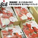 【クール便送料無料】【徳島県産】さくらももいちご ブランドいちご 大きさおまかせ 約230g×4パック(北海道沖縄別途…