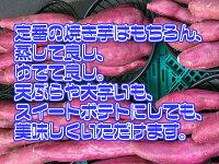 【送料無料】【徳島県産】訳あり なると金時 里むすめ 2S〜Sサイズ 約10kg(北海道沖縄別途送料加算)鳴門金時/焼き芋/煮物/さつま芋/さつまいも/サツマイモ/サツマ芋/薩摩芋/スイートポテト/芋菓子/おせち/お節/栗きんとん/訳有/訳あり/訳アリ/ワケあり/スイーツ/お菓子