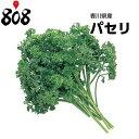 【西日本産】パセリ 1パック 約200g【野菜詰め合わせセットと同梱で送料無料】【送料別】/敬老の日/効能/栄養/パセ…