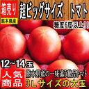 【熊本県 他 西日本産】超ビッグサイズ トマト 1箱 3Lサイズ 12〜14玉入【野菜詰め合わせセットと同梱で送料無料】【西日本産 低農薬・特別栽培農産物】
