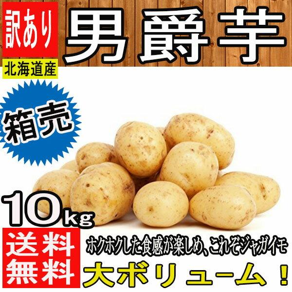 【北海道 他 西日本産】男爵芋 新じゃが 1箱 L〜2Lサイズ 約10kg【常温便送料無料】(東北のお客様は送料500円北海道・沖縄県のお客様は送料1000円)じゃがいも/ジャガイモ/じゃが芋
