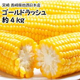 【予約商品】6月上旬頃発送予定【西日本産】ゴールドラッシュ1箱