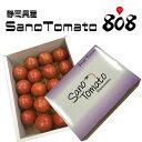 【静岡県浜松産】とってもあま〜い 高糖度フルーツトマト SanoTomato 大きさおまかせ 1箱【常温便送料無料】(北海道…