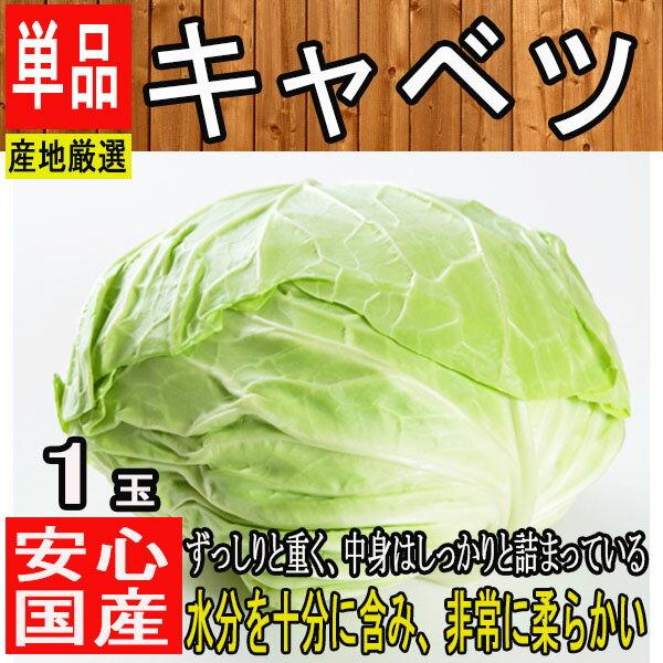 【産地厳選】大玉 低農薬 キャベツ【野菜詰め合わせセットと同梱で送料無料】