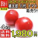 【西日本産】絶品 桃太郎 八代 トマト 大きさおまかせ 訳あり 約4kg【クール便推奨商品】【常温便送料無料】(北…