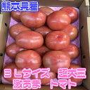 【熊本県産】超ビッグサイズ トマト 1箱 3Lサイズ 12玉入【送料別】【西日本産 無農薬・低農薬・特別栽培農産物】