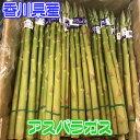 【香川県産】グリーンアスパラ アスパラガス 1束3本約100g【クール便推奨商品】【野菜詰め合わせセットと同梱で送料…