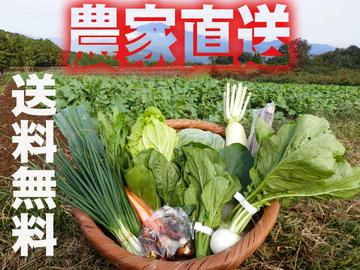 九州佐賀の農家直送野菜セット【送料無料】【常温発送】【10品詰め合わせ+こだわりの【たまご】
