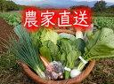 九州佐賀の農家直送野菜セット【クール便】【10品詰め合わせ+こだわりの【たまご】