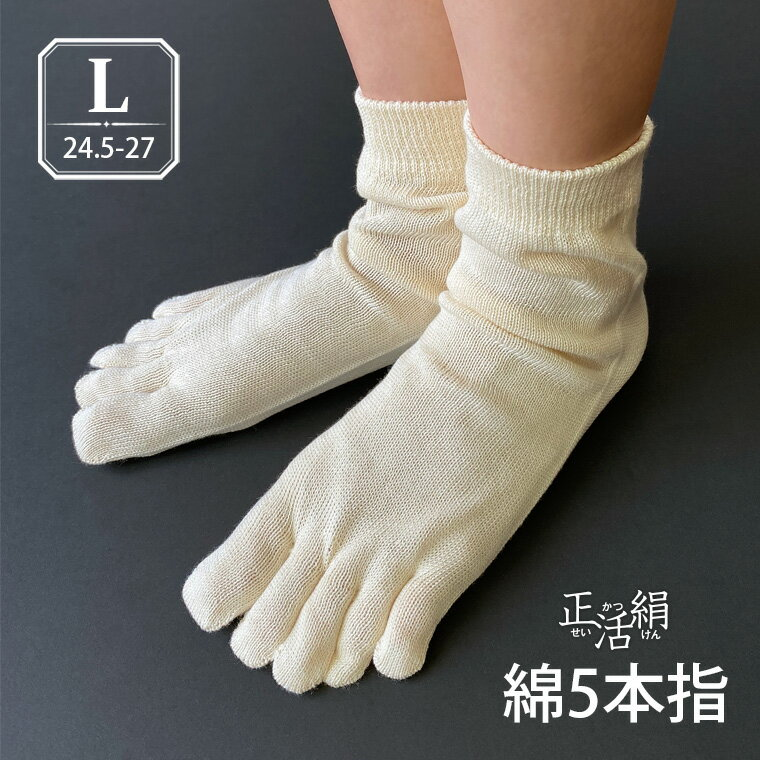 【冷えとり靴下 正活絹】綿5本指靴下(L) 綿100% メンズ 841 日本製【あす楽】[I:9/40]