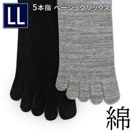 5本指ベーシックソックス《綿》 LL メンズ 5本指ソックス 5本指靴下 足首ゆったり コットン 冷え取り 大きいサイズ 全2色 日本製 841【あす楽】[I:3/10]