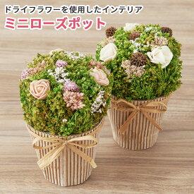 敬老の日 ドライフラワー ミニ ポット 鉢 花 そのまま飾れる花束 プレゼント ギフト セット メッセージカード付き 誕生日 実用的 お祝い お礼 詰合せ インテリア 卓上 かわいい おしゃれ