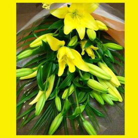 夏《敬老の日ギフトにも》優しい香り 生花 黄色いユリ イエローリリーの花束【花屋 花束 黄色い花 金運 風水 縁起の良い ギフト 誕生日 敬老の日 還暦 プレゼント 女性 結婚記念日 見舞い 祝い 新築祝い 京都花屋】