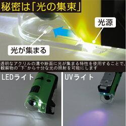 ハンディ顕微鏡DX100倍率〜250倍率スマホ撮影全3色レイメイ藤井24-RXT300*夏休み応援宿題自由研究透過型落射型LEDライトUVライト便利楽しいこども