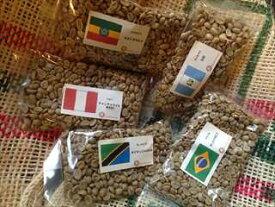 【コーヒー生豆】初めて焙煎スターターセットVol.1(5ヶ国 100g×5袋)【メール便対応可】