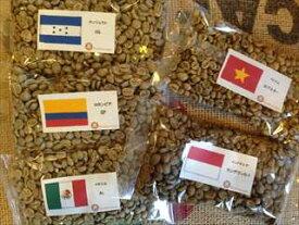 【コーヒー生豆】初めて焙煎スターターセットVol.2(5ヶ国 100g×5袋)【メール便対応可】
