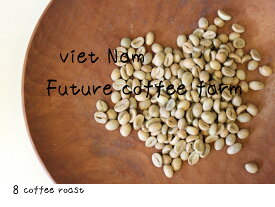 【コーヒー生豆】ベトナム ロブスタ Full−Washed 高品質 <内容量>400g Future coffee farm × 8coffee