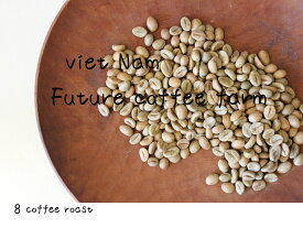 【コーヒー生豆】ベトナム FINE ROBUSTA(ファインロブスタ)Winey - Natural<内容量>200g Future coffee farm × 8coffee