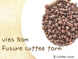 【コーヒー焙煎豆】ベトナム FINE ROBUSTA(ファインロブスタ) Winey - Natural<内容量>240g×2袋  Future coffee farm × 8coffee
