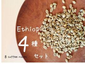【コーヒー生豆】飲み比べ! エチオピア産生豆スターターセット!VOL.4(4種類 100g×4袋)【メール便対応可】