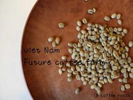 【コーヒー生豆】ベトナム FINE ROBUSTA(ファインロブスタ)Robusta - Peaberry<内容量>600g Future coffee farm × 8coffee
