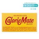 大塚製薬 カロリーメイトブロック チョコレート味 2本入 20個×3セット(計60個セット)