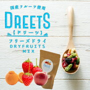 ふたみ青果(株)DREETSドリーツ苺巨峰桃1袋フリーズドライフルーツミックス北海道釧路産