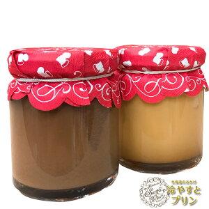 サンタクリーム 北海道のおかげ 冷やすとプリン 詰め合わせ 「チョコキャラメル・カスタード」100g×2セットお取り寄せ スイーツ お礼 ギフト 贈り物 セット