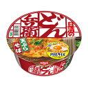 日清食品 どん兵衛 北海道限定天ぷらそば【常】北海道お土産 インスタントラーメン